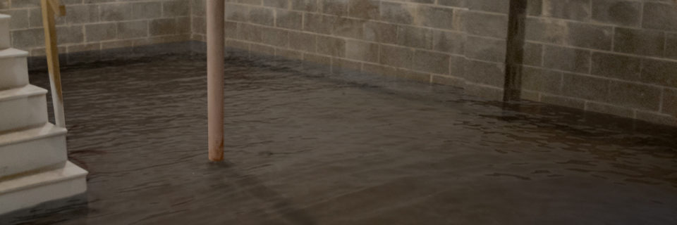 Waterproofing Services in Central & South Jersey